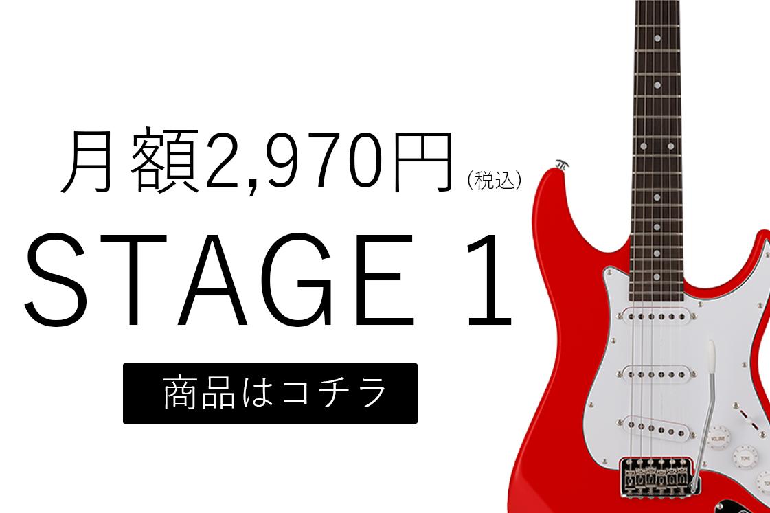 月額2,970円(税込)ステージ1