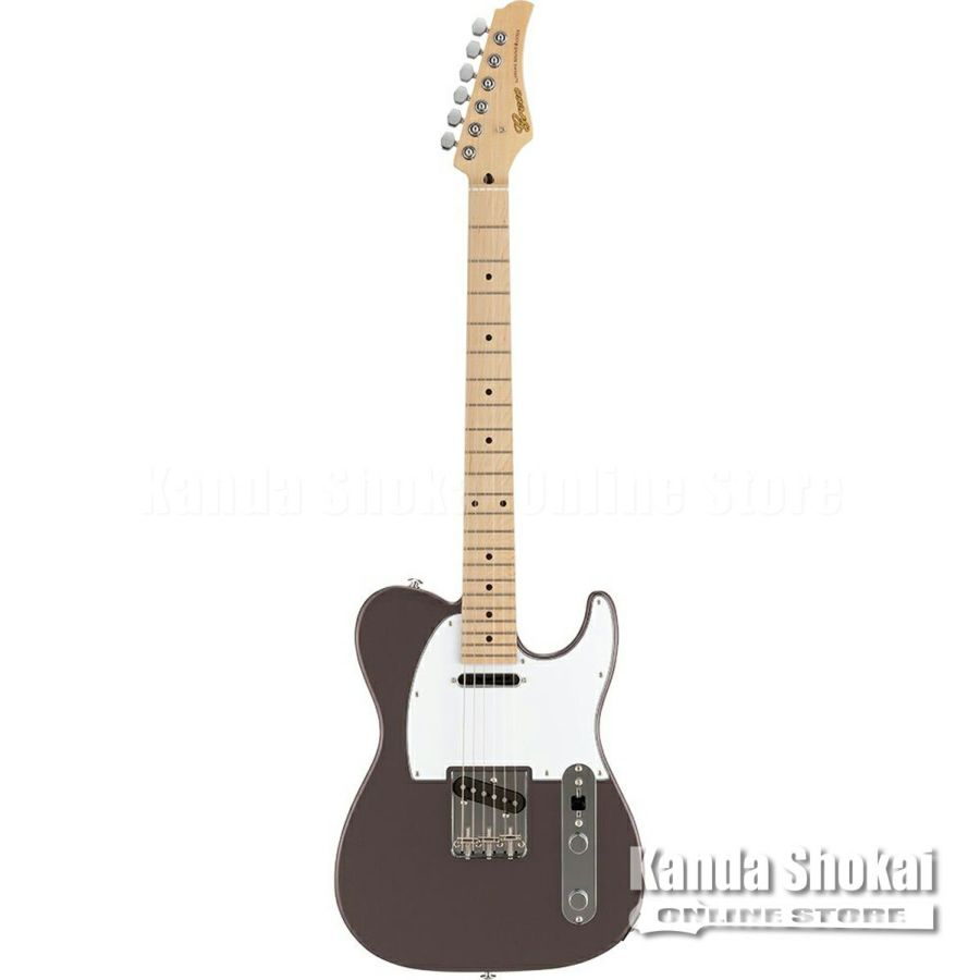 Greco WST-STD, Metallic Gray / Maple Fingerboardの商品画像1