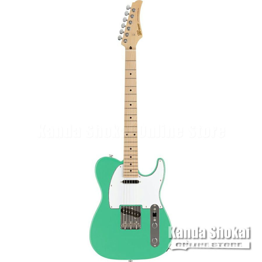 Greco WST-STD, Light Green / Maple Fingerboardの商品画像1